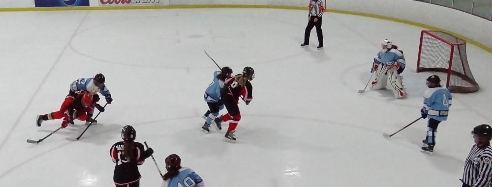 GirlsEishockey.de e.V.
